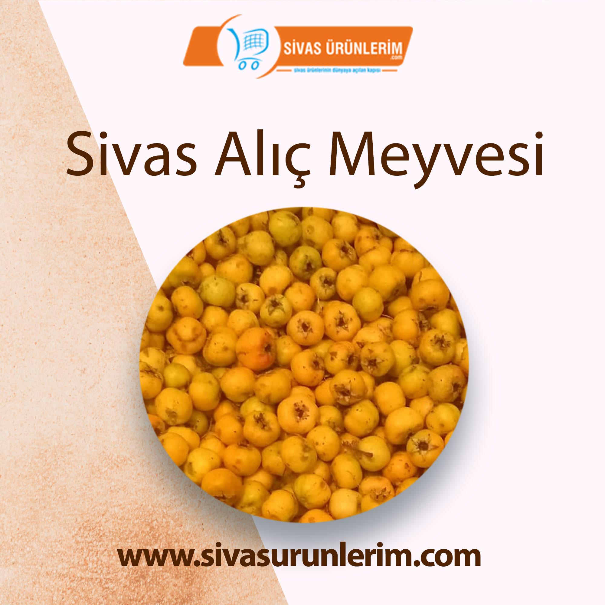 Sivas Alıç Meyvesi