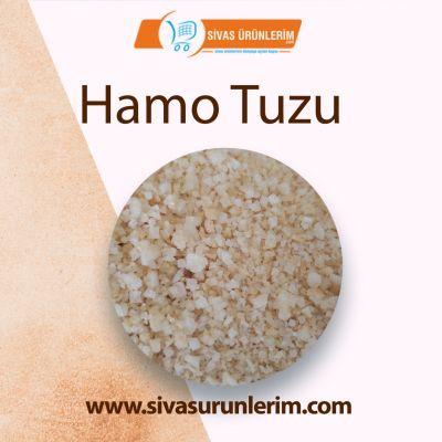 Hamo Tuzu